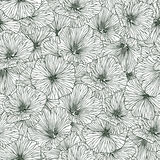 Linear seamless pattern - mallow flowers Royalty Free Stock Images