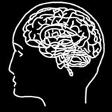 Linear stylized drawing of brain Stock Photos