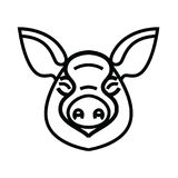 Linear stylized drawing of pig swine Stock Photography