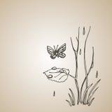 蝴蝶和树新芽在雨中 板刻样式减速火箭的葡萄酒传染媒介lineart例证 EPS-8 库存照片