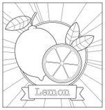 Lineart-Fruchtillustration Lizenzfreies Stockfoto