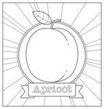 Lineart-Fruchtillustration Lizenzfreie Stockfotografie