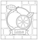 Lineart-Fruchtillustration Stockfoto