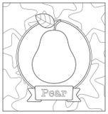 Lineart fruit illustration Stock Image