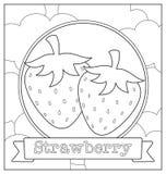 Lineart fruit illustration Royalty Free Stock Photos