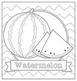 Lineart fruit illustration Royalty Free Stock Image