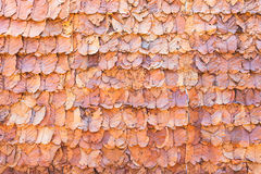 Lined dry leaves wall color background texture Stock Photo