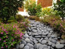 Lined Rocks. A simple rock path with shrubs around it. It is a very simple picture and has a brick wall in the background surrounding the setting Royalty Free Stock Photos