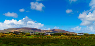 Lined up houses in Ireland Stock Image