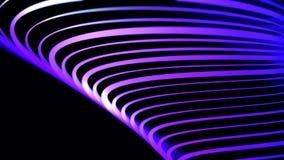 Linee al neon curve estratto di colore lilla che girano sul fondo nero, ciclo senza cuciture animazione Neon porpora illustrazione di stock