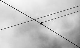 Linee attraverso il cielo Fotografia Stock Libera da Diritti
