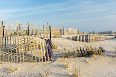 Linee della spiaggia Fotografia Stock