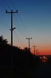 Linee di energia elettrica contro un cielo di alba Fotografie Stock