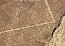 Linee di Nazca - balena Immagini Stock Libere da Diritti