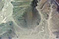 Linee di Nazca - figura Fotografia Stock Libera da Diritti