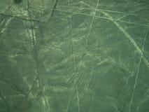 Linee di Nazca: Il condor Fotografia Stock Libera da Diritti