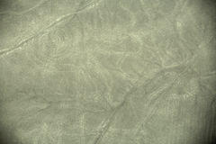 Linee di Nazca - scimmia Immagine Stock