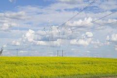 Linee elettriche ad alta tensione di sostegno Fotografia Stock Libera da Diritti