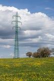 Linee elettriche ad alta tensione sopra il prato della molla Pali di elettricità Immagini Stock Libere da Diritti