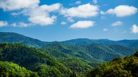 Linee elettriche in colline verdi in bel tempo fotografie stock