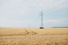 Linee elettriche e pali sul campo fotografie stock