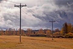 Linee telefoniche sotto Autumn Skies Fotografia Stock Libera da Diritti