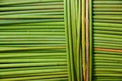 Linee verde e modello Fotografie Stock