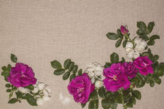 Linen background 7 Royalty Free Stock Photography
