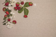 Linen background 12 Stock Images