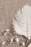 Linen background with white feather Stock Photo