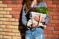 Linen Bag with fresh leaf Lettuce Salad in woman hands Royalty Free Stock Images