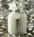 Linen canvas bag and coins, money Stock Photography