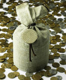Linen canvas bag and coins, money Royalty Free Stock Photo