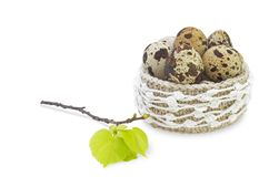 Linen crochet lace basket with Easter eggs isolated on white background. Spring linden tree branch with green leaves and buds and Stock Photos