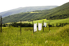 Linen drying. Couple of linen sheets drying under sun at a green field Stock Image
