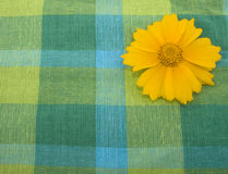 Linen fabric and yellow flower Royalty Free Stock Image