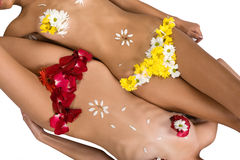 Linen Flowers Stock Photo