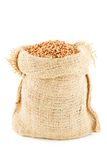 A linen sack filled by buckwheat groats Stock Images