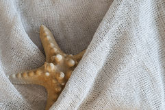 Linen with starfish Royalty Free Stock Image