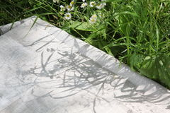 Linen tablecloth on the grass Stock Images