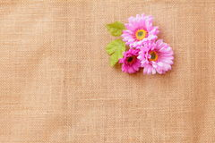 Linen texture with flowers. Linen texture background with beautiful flowers Royalty Free Stock Photo