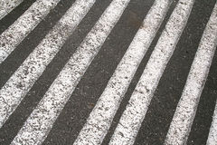 Lines on asphalt Stock Photography