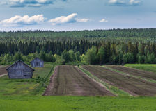 Lines, barns and green under blue cloudy skies in Finnish Lapland. Stock Photography