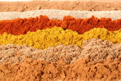 Lines of Different spices Royalty Free Stock Photos