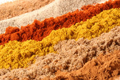Lines of different spices. From front to back: cinnamon, coriander, curry, paprika, white pepper, nutmeg Royalty Free Stock Images