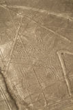 Lines and Geoglyphs of Nazca, Peru - Spider Stock Image