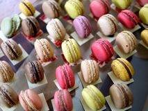 Lines of Macaroons Royalty Free Stock Photography