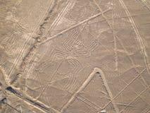 lines nazca Arkivbilder