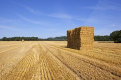 Straw bale stack. Lines and patterns in a hrvested wheat field with a stack of straw bales and woodland under a blue summer sky in yorkshire Royalty Free Stock Photography