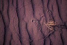 Lines and patterns in sand. The lines and patterns in the sand from a bush stock image